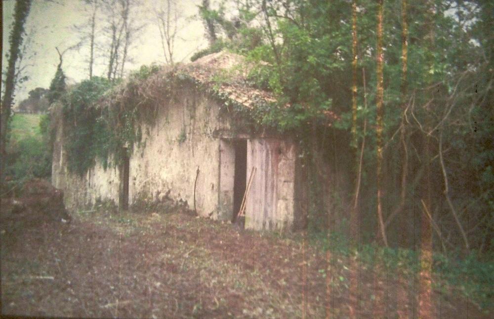 Le moulin était à l'abandon depuis presque 20 ans