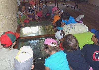 visites-scolaires-moulin-de-pinquet